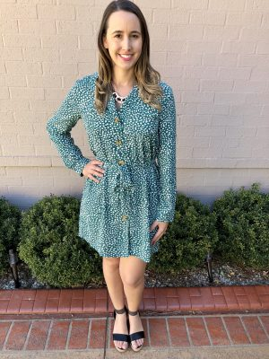 Trixi Dress in Teal
